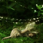 Sleeping fairy